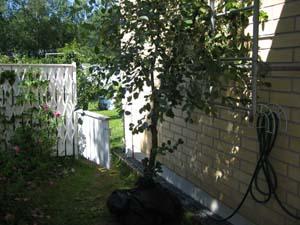 20080711_31.jpg