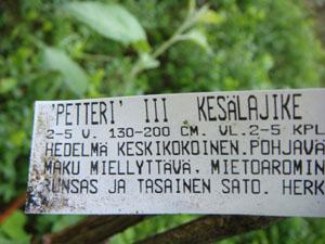20090614_25.jpg