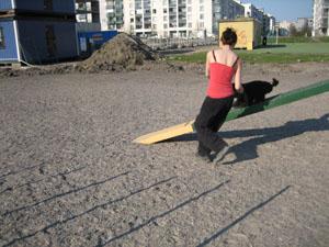 agility20080502_1.jpg